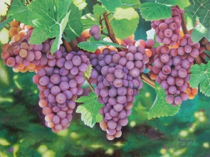 Glowing Grapes print 18x24%27%27